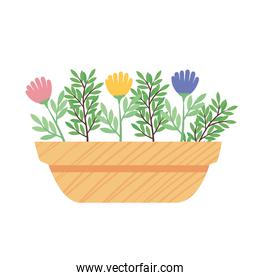 colors flowers plant in yellow ceramic pot spring season icon