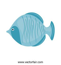 blue fish wild sealife icon
