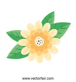 beauty cream flower and leafs spring season icon