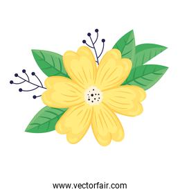 beauty yellow flower and leafs spring season icon