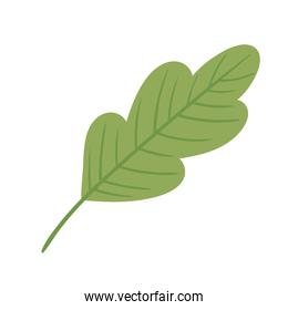green leaf ecology nature icon