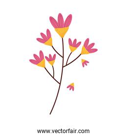 branch with pink flowers easter season icon