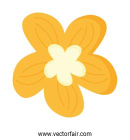 flower with yellow petals easter season nature icon