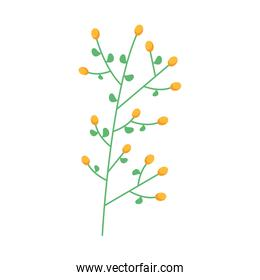 branch with seeds nature easter icon