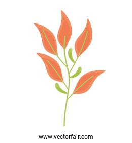 branch with orange leafs plant spring icon