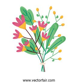 spring season pink flowers and green leafs decoration