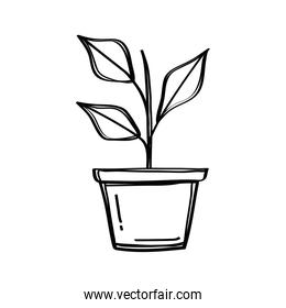house plant in pot doodle style icon