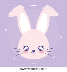 rabbit over a purple background