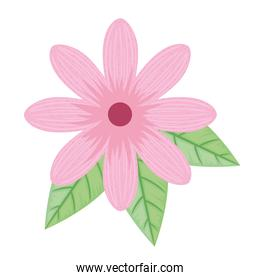 cute pink petals flower and leafs spring icon