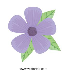cute purple petals flower and leafs spring icon