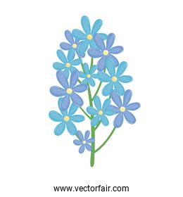 branch with blue flowers spring icon