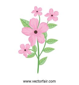 cute pink flowers and leafs spring icon