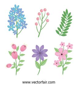 bundle of flowers and leafs spring season icons