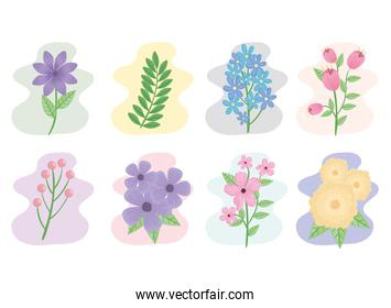 bundle of eight flowers and leafs spring season icons