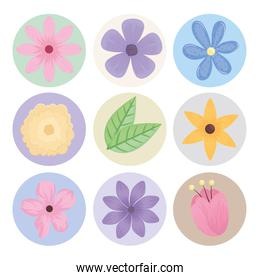 bundle of nine flowers spring season icons