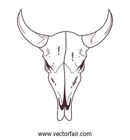 skull head of wild bull icon