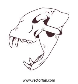 skull head of wild tiger icon