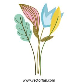 flowers stem leaf nature isolated style