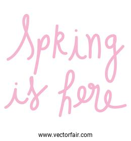 pink hand drawn lettering spring is here isolated style