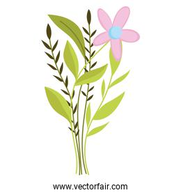 cute flower leaves foliage nature isolated style