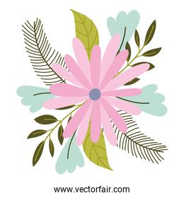 pink flower leaves branch foliage nature isolated style