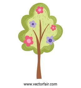 tree with flowers nature decoration isolated white background