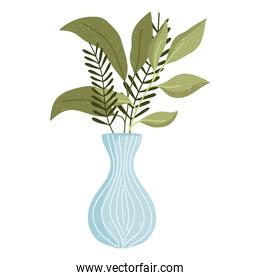 leaves foliage in vase decoration white background