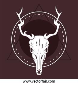 skull head of wild reindeer in circular frame