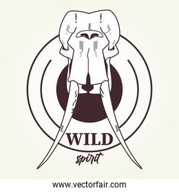 wild spirit lettering with elephant head skull