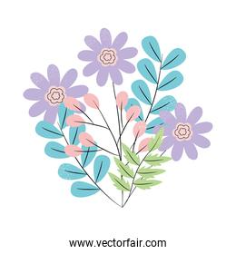 colorful flowers and leaves design