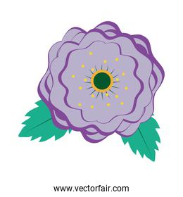 purple flower with leaves, colorful design