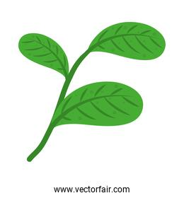 icon of stem with green leaves, colorful design