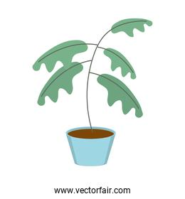 gardening plant in pot decoration icon on white background