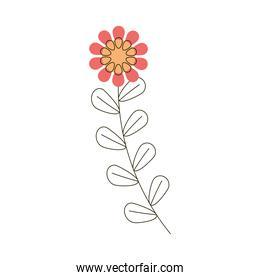 flower leaves decoration icon white background