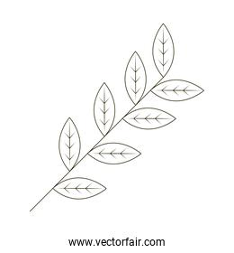 branch leaves foliage nature line icon white background