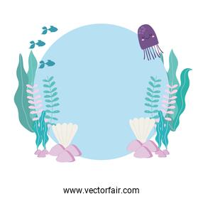 sea fishes jellyfish seashells algaes stones cartoon