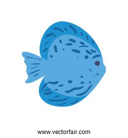 Fish animal with lines vector design
