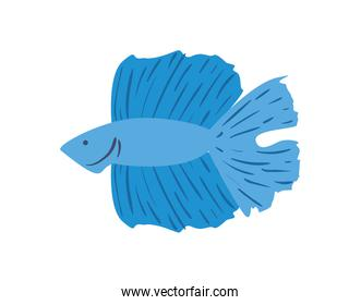 Cute fish animal isolated vector design