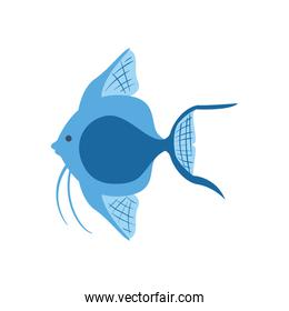 Blue fish animal isolated vector design