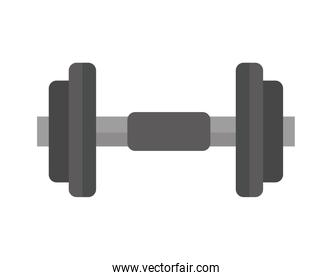 gym dumbbell accessory isolated icon