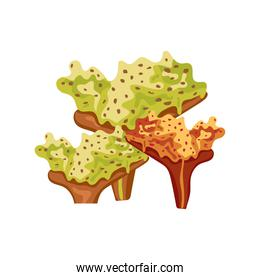 green and orange coral sea life nature icon