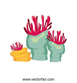 red and blue coral sea life nature icon
