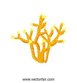 yellow coral sea life nature icon