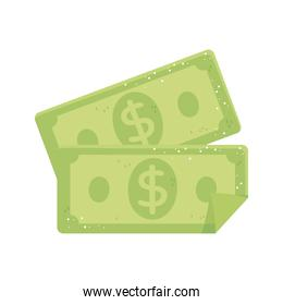 banknote money currency cash isolated