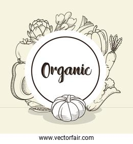 template of organic concept with vegetables around