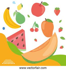 Healthy food fruits icon collection vector design