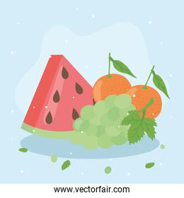 Healthy food fruits icons vector design