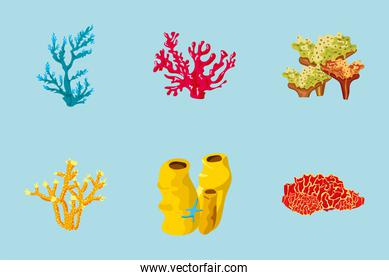 bundle of six coral sea life nature icons