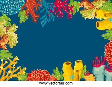 corals and algaes sea life nature frame