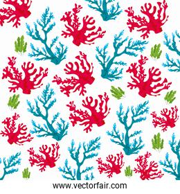 corals sea life nature pattern in white background